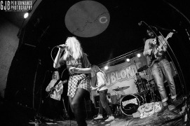 Du Blonde - Newcastle Cluny June 2015