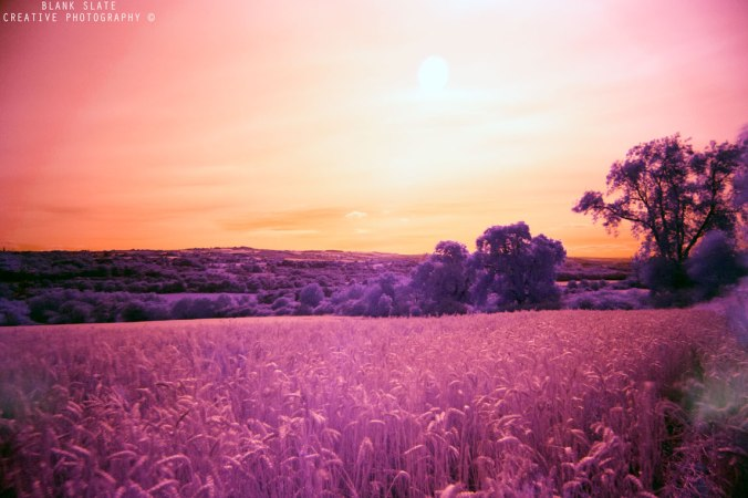 Infrared photography - Tyne Valley - Newcastle